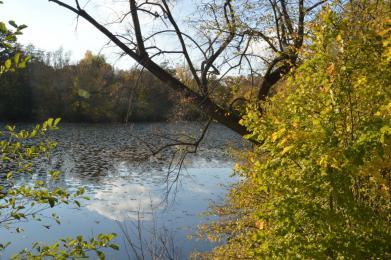 """""""Krásný podzim"""" jako předzvěst apokalypsy"""