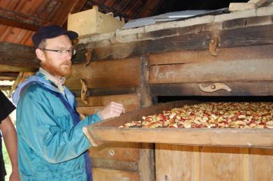 Sušení jablek v tradiční sušírně