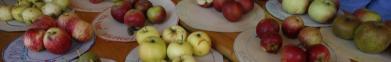 Staňte se dobrovolníky na Jablečné slavnosti v Hostětíně!