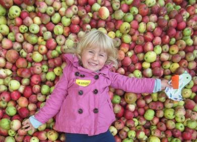 Již tuto neděli vypukne Jablečná slavnost v Hostětíně. Stále se ještě můžete zapojit i jako dobrovolník.
